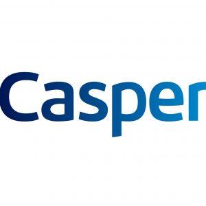 Casper Via S Ekran Değişimi Fiyatı